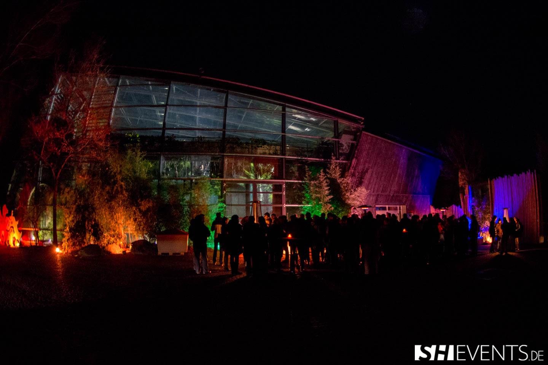 Beleuchtetes Tierparkevent